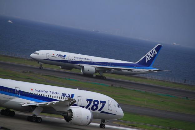 ANA Boeing 777-281/ER(JA743A) 1