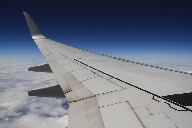 JAL Boeing 737-800 主翼 -4-