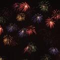 水郷の花火