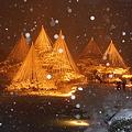 Photos: 兼六園に降る雪