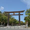 写真: 橿原神宮・一の鳥居