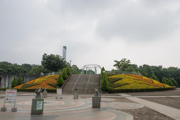 【相模原麻溝公園の景色】1