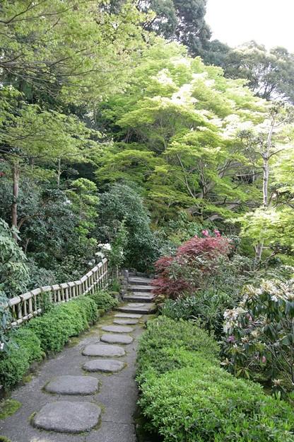 IMG_5461當麻寺・西南院・西南院庭園