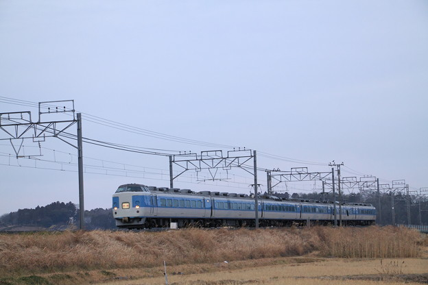 Photos: 亀崎踏切 成田臨 183系 あずさ色