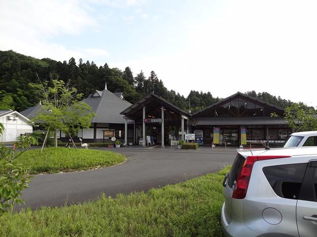 20150808_09 辰ノ口親水公園キャンプ?