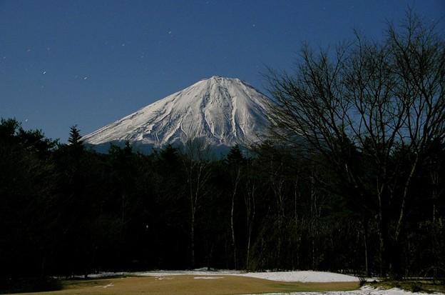 月光富士 西湖野鳥の森公園03