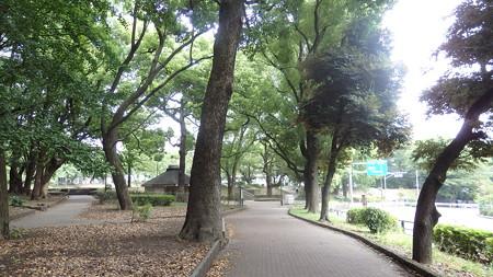 20150814東京散策 (5)