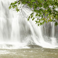 Photos: 初夏の紅葉と滝