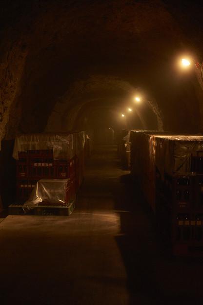 洞窟を行く