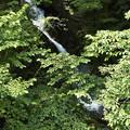 Photos: 抛雪の滝