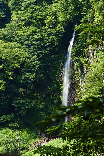 Photos: 回顧の滝