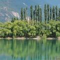 緑を映す池