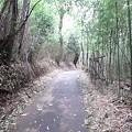 写真: 110903 伝甲州道