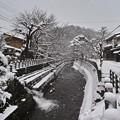 Photos: 13.江名子川のせせらぎ