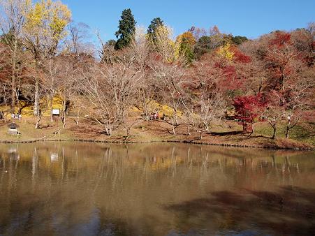 2011 用作公園