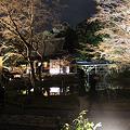 Photos: hanatouro_87