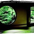 Photos: 悟りの窓