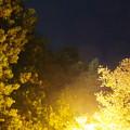 4月に撮影した北斗七星のコップ部分と桜