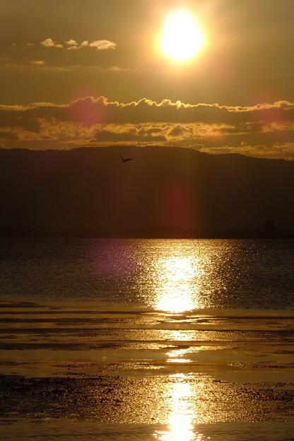トンビが奏でる芸術   太陽の恵み  地球の水の恵み