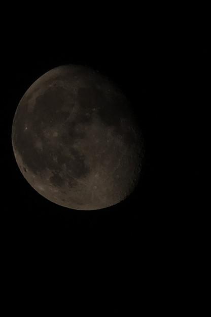 将来の夢  月面着陸