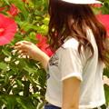Photos: 真夏