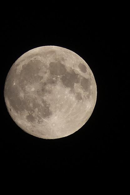 2015年の中秋の名月は月齢14