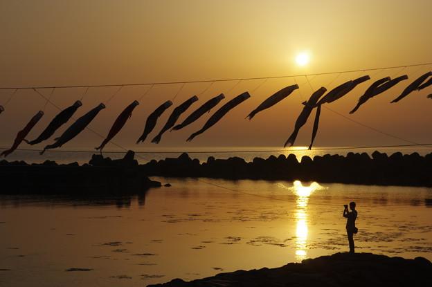 鯉のぼりと夕陽
