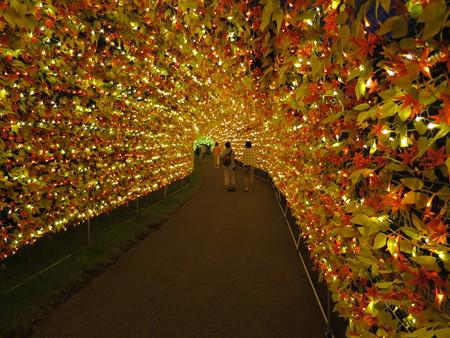 アパリゾート上越妙高 イルミネーション2015 虹龍の光の大トンネル1