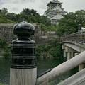 大阪城が見える橋