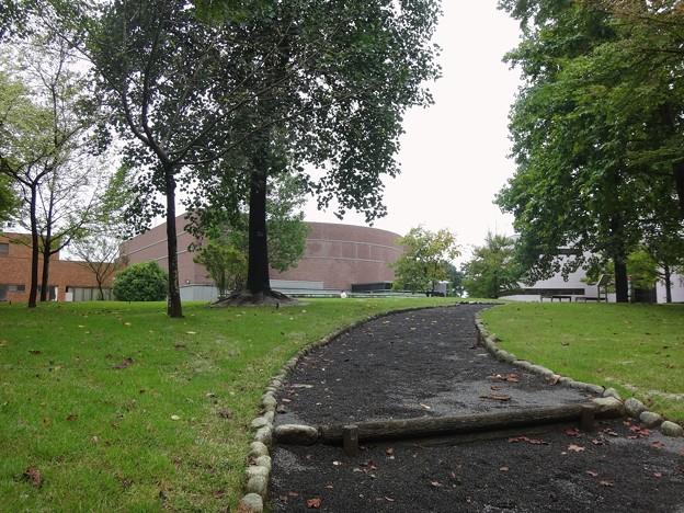キャンパス