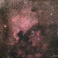 Photos: 13-北アメリカ星雲ペリカン星雲