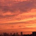 Photos: 彩雲
