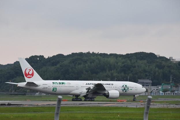 JALは東北を応援しています。