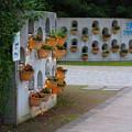 花の博物館