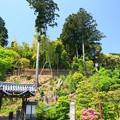 Photos: 三鈷寺14