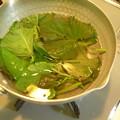 Photos: サツマイモ茎葉ジュース2