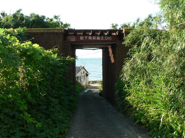真夏の海へ (1)