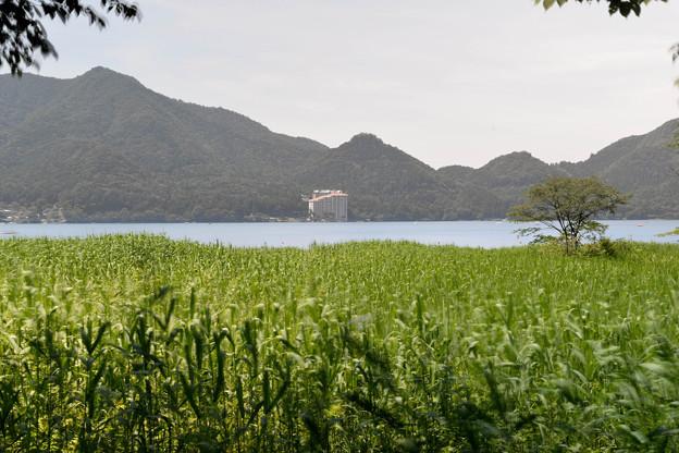 Photos: 湖畔の宿