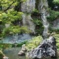 Photos: 三尊石琉美園