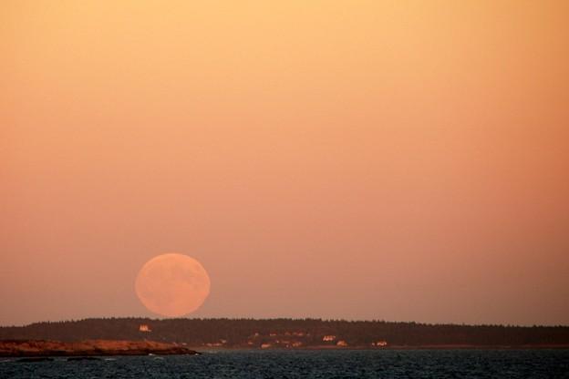 Harvest Super-Moonrise 9-27-15