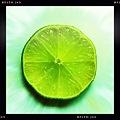 Lime 7-24-11