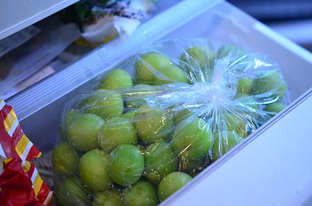 梅シロップ作り (5)