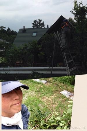今日は造園屋さんが我が家の庭のお手入れ、私もちょこっとだけお手伝い!(ちょこっとだけなんだけど、めっちゃ暑くてヘロヘロ、この時期は命がけだね)