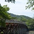 盛夏の宇治橋