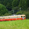 Photos: 歌声列車2