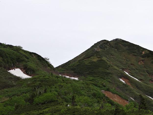 ミノブチ岳より山頂を望む