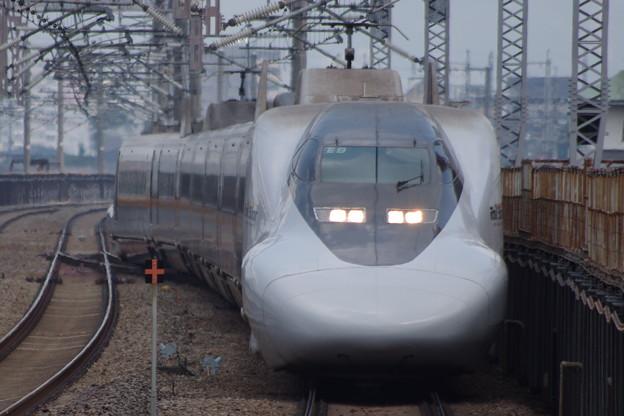 IMGP0025