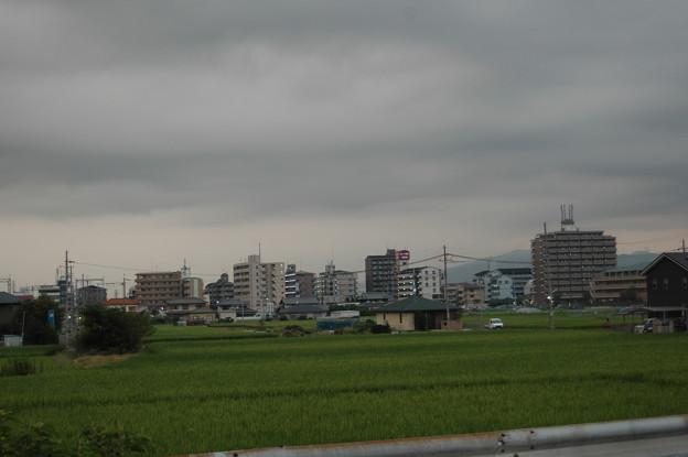 大阪 郊外 田んぼとマンション