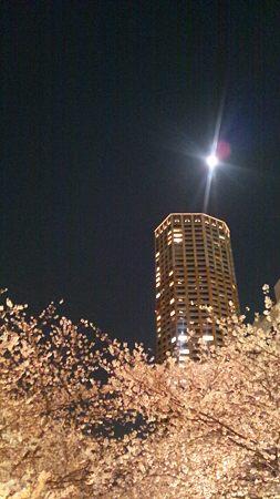 星のように瞬く月