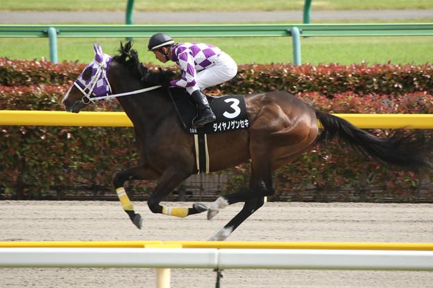 ダイヤノゲンセキ 返し馬(15/05/10・ブリリアントステークス)